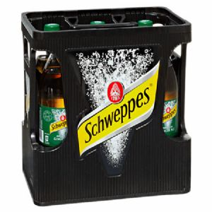 Schweppes Ginger Ale 6 x 1 l Flasche